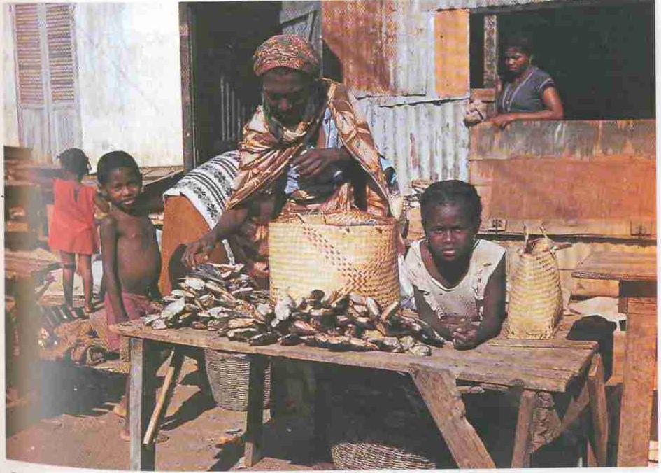 Меланезия (черные острова, темнокожие люди)...», стр. 98
